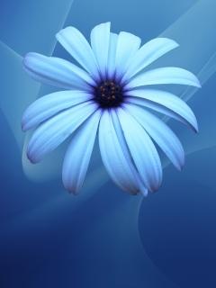 Нежно-голубой цветок на синеватом фоне украсит экнар вашего мобильника.