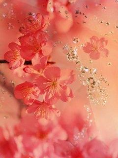 Гламурная розовая картинка-коллаж для внутреннего экрана Нокий 6131